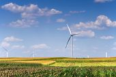 Renewable Energy With Wind Turbines In The Green Fields poster