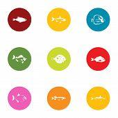 Fish Breeding Icons Set. Flat Set Of 9 Fish Breeding Vector Icons For Web Isolated On White Backgrou poster