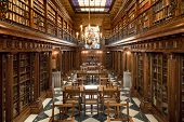 stock photo of backbone  - old library of books inside in Spain - JPG