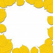 Quadro de folhas de outono sobre o fundo branco, caindo de sombras