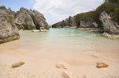 Jobson's Cove Bermuda