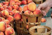 Gorgeous Fresh Peaches