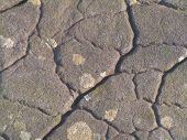 pic of lithosphere  - close up of a large boulder from north america - JPG