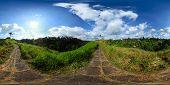 Panorama esférico 360 grados de una pasarela de azulejo a través de verdes prados en la cima de una colina
