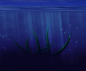 stock photo of kraken  - Dark Green Octopus Underwater Background Image Texture - JPG