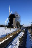 Winter Windmill Portrait