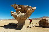 The Salvador Dali desert. Bolivia.