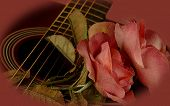 picture of acoustic guitar  - romantic view of a guitar and rose - JPG