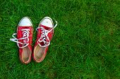 Sport Shoes On Grass Background