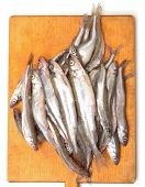 Fresh Smelts Fish