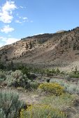 Scenic Wyoming