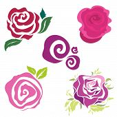 Set Of Rose Design Elements