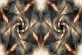 Brown Abstract Organic Background
