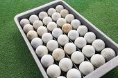 Rows of golf balls in tray on green; Koh Pha Ngan; Thailand