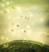 stock photo of hilltop  - Butterflies in the shinning fantasy hilltop landscape - JPG