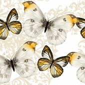 stock photo of butterfly  - Vector seamless pattern with vintage butterflies for design - JPG