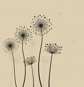 Stylized Dandelions.