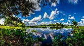 A High Resolution, Colorful, Panoramic Shot of Beautiful 40-Acre Lake with Yellow Lotus Lilies