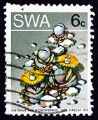 Postage Stamp South West Africa 1973 Stone Plant, Succulent Plan