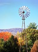 Windmill Amongst Beautiful Autumn Leaves
