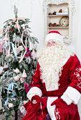 Saint Nicolas sits near the Christmas fir-tree