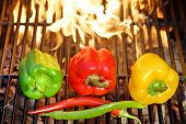 Colorful Bell And Chile Peppers On The Bbq Cast Iron Grill