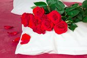 Red Roses On A Pillow And Red Sheets