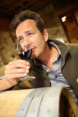 Winegrower in wine-cellar holding glass of wine
