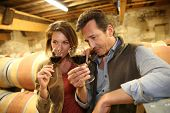 stock photo of wine cellar  - Oenologists in wine cellar tasting red wine - JPG