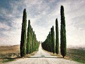 Tuscan Rural Landscape