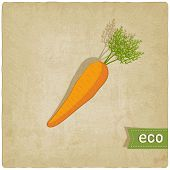 carrot eco background
