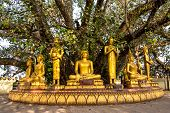 Buddha sculptures at Pha That Luang