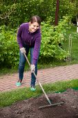 Beautiful Woman Working With Rake On Garden Bed
