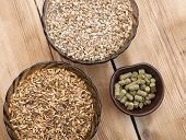 stock photo of malt  - beer ingredients - JPG