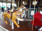 stock photo of merry-go-round  - Merry Go Round photo of the various animal seats - JPG