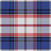 Vector Seamless Pattern Scottish Tartan State Of Florida