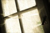 image of cobweb  - old window with cobwebs - JPG
