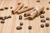 Spice Cinnamon