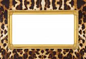 Golden Frame With Leopard Texture Background