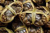 Shanghai hairy crab