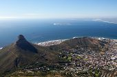 foto of african lion  - Cape Town city bowl below Signal Hill and Lion