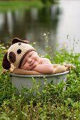 Smililng Baby Boy Wearing A Puppy Dog Hat