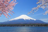 Mt.fuji At Lake Yamanaka, Japan