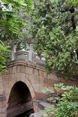 Stone Arch Bridge At Peking University, Beijing