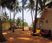 Goa Beach Scenery