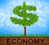Economy Tree Represents American Dollars And Bank