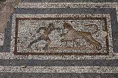 Old Roman Mosaic Floor In Kos City; Greece