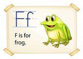 Frog flashcard