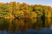 Autumn On The Spree