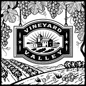 Vineyard Valley black and white. Vector